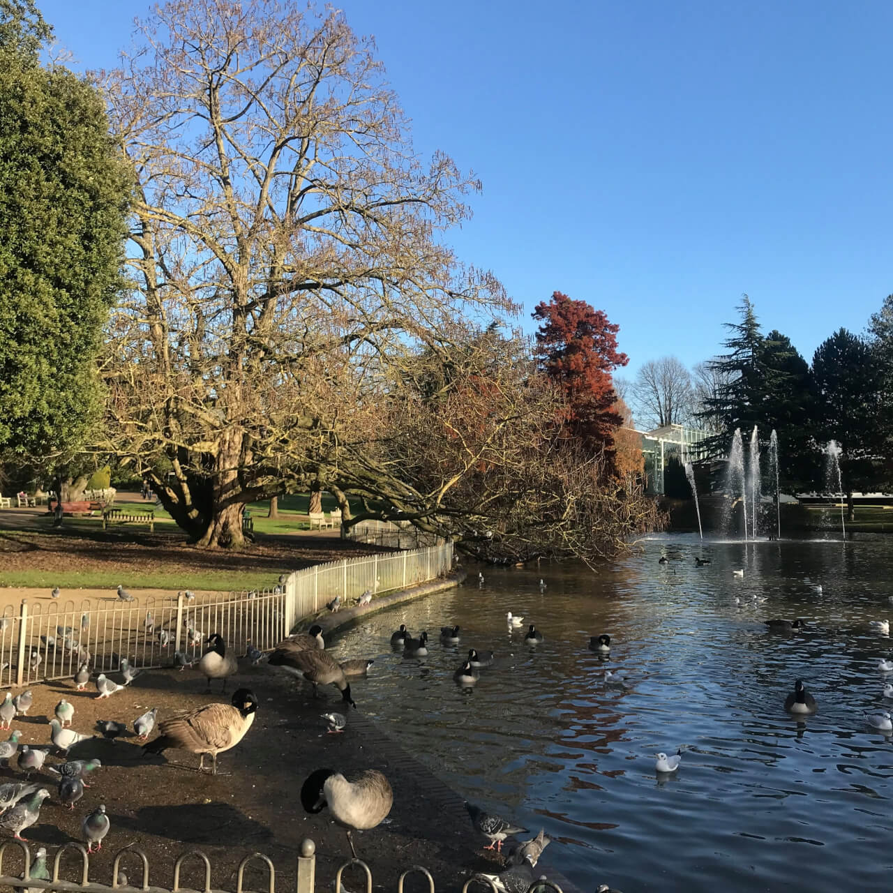 Exploring the local area: Leamington Spa